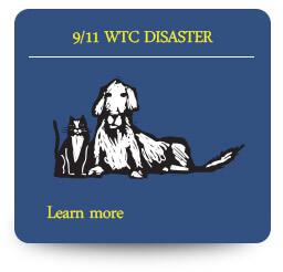 9/11 World Trade Center Disaster