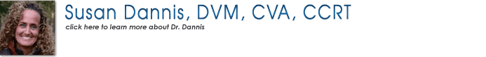 Susan Dannis, DVM, CVA, CCRT