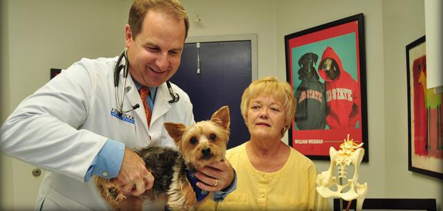 Veterinarian in Frederick MD
