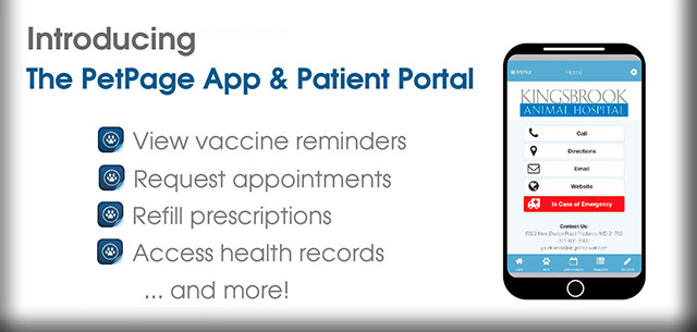 Kingsbrook Animal Hospital PetPage Mobile App | Frederick Vet