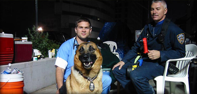 9-11 support from kingsbrook animal hospital