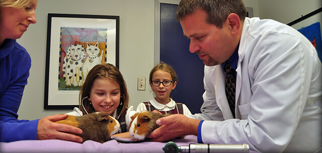 exotic pet care in frederick maryland