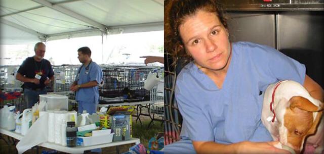 hurricane katrina support from kingsbrook animal hospital