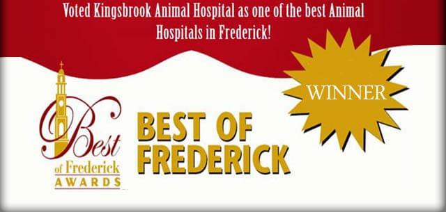 new clients at kingsbrook animal hospital