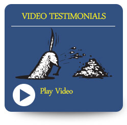 See what out clients say about us